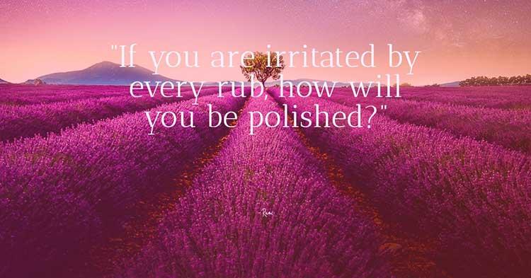 life quote 21