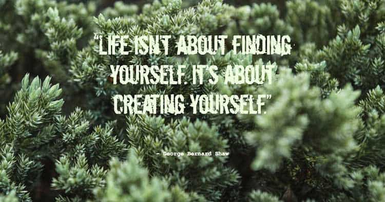 life quote 7